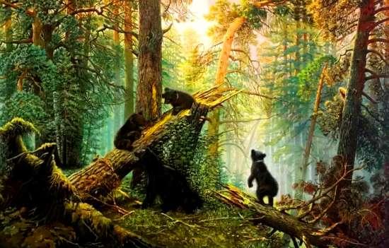 Картина по номерам 40x50 Утро в сосновом лесу
